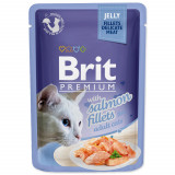 Kapsička BRIT Premium Cat Delicate Fillets in Jelly with Salmon 85g