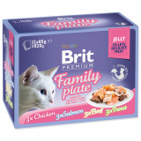Kapsičky BRIT Premium Cat Delicate Fillets in Jelly Family Plate 1020g