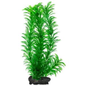 Rostlina TETRA Green Cabomba L 1ks