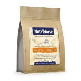 Nutri Horse Snack-Carrot 600 g