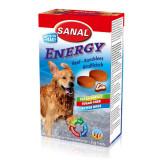 Sanal pes Energy s vitamíny 100 tbl