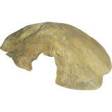 Jeskyně EXO TERRA Reptile Cave střední 23,5 x 16 x 6,5 cm 1ks