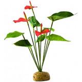 Rostlina EXO TERRA Anthurium Bush 30 cm 1ks