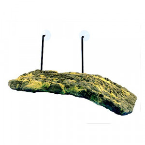 Ostrov ZOO MED pro želvy 39 cm 1ks