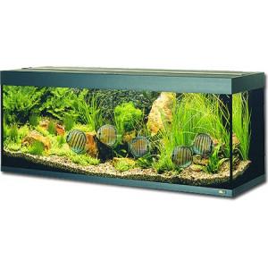 Akvárium set JUWEL Rio 300 černé 350l