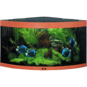 Akvárium set JUWEL Trigon 350 buk 350l