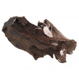 Kořen DECOR WOOD DriftWood shrink M 1ks