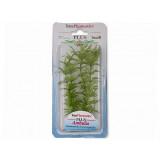 Rostlina TETRA Ambulia Plus 15 cm 1ks