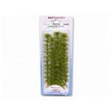 Rostlina TETRA Ambulia Plus 23 cm 1ks