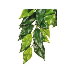 Rostlina EXO TERRA Ficus malá 45 cm 1ks