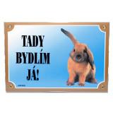 Tabulka DAFIKO králík 1ks