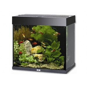 Akvárium set JUWEL Lido 120 černé 120l