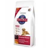 Hills Canine Adult Large 12 kg + 2,5 kg ZDARMA