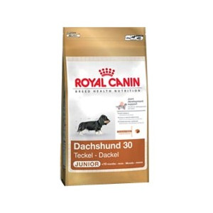 Royal Canin BREED Jezevčík Junior 1,5 kg
