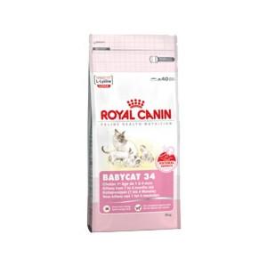 Royal Canin Feline Growth Baby Cat 34 400 g