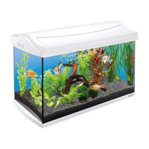 Akvárium set TETRA AquaArt bílé 60l