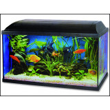 Akvárium set CAT-GATO Pacific 60 x 30 x 30 cm 54l