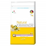 Trainer Natural Mini Senior 800g