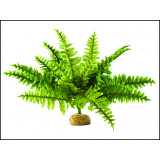 Rostlina EXO TERRA Boston Fern střední 29 cm 1ks