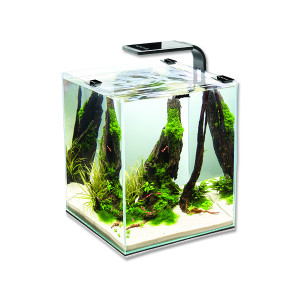 Akvárium set AQUAEL Shrimp Smart černé 20 x 20 x 25 cm 10l