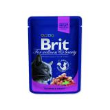 Kapsička BRIT Premium Cat Salmon & Trout