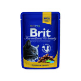 Kapsička BRIT Premium Cat Chicken & Turkey 100g
