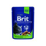 Kapsička BRIT Premium Cat Chicken Slices for Sterilised 100g