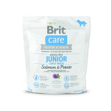 BRIT Care Grain-free Junior Large Breed Salmon & Potato 1kg