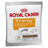 Royal Canin snack ENERGY 50 g