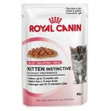 Royal Canin Feline kapsička Kitten 85 g