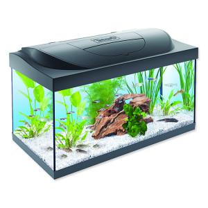 Akvárium set TETRA Starter Line LED 60 x 30 x 30 cm 54l