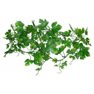 Lucky Reptile Jungle Vine Gape Leaf Vine cca 200 cm