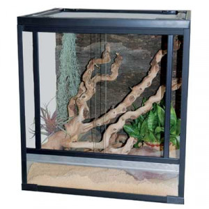 Lucky Reptile Herp-Tarrium 60x50x100 cm