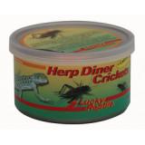 Lucky Reptile Herp Diner - cvrčci 35g 35g - velcí