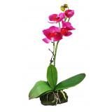 Lucky Reptile Jungle Plants kvetoucí Orchidej - růžová cca 30 cm