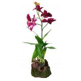 Lucky Reptile Jungle Plants kvetoucí Orchidej - fialová cca cca 40 cm