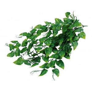 Lucky Reptile Jungle Plants Philo cca 50 cm