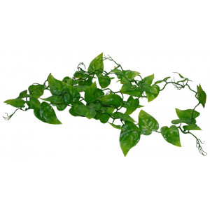 Lucky Reptile Jungle Vine Philo Vine, ca. 200 cm