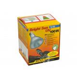 Bright Sun UV Turtle 100W