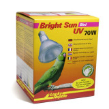 Lucky Reptile Bright Sun Bird 70W