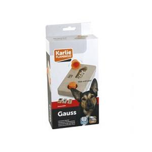 Interaktivní dřevěná hračka GAUSS 22x12cm