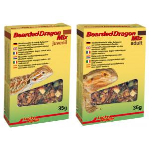 Lucky Reptile Bearded Dragon Mix Bearded Dragon Mix Juvenil 70 g