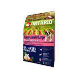 ONTARIO Puppy & Junior Large Chicken & Potatoes & Herbs 2,25kg