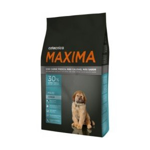 Maxima Dog Junior Maxi 14 kg