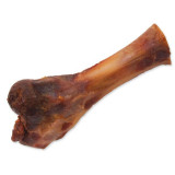 Ham Bone ONTARIO Dog S