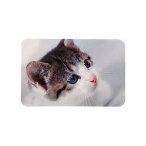 Prostírání pro kočku pod misky s fotkou kočky 43x28 cm