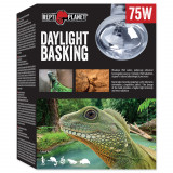 Žárovka REPTI PLANET Daylight Basking Spot 75W