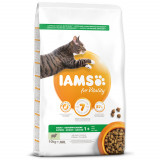 IAMS for Vitality Adult Cat Food with Lamb 10kg