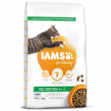 IAMS for Vitality Adult Cat Food with Ocean Fish