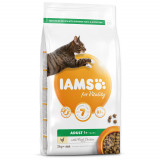 IAMS for Vitality Adult Cat Food with Fresh Chicken